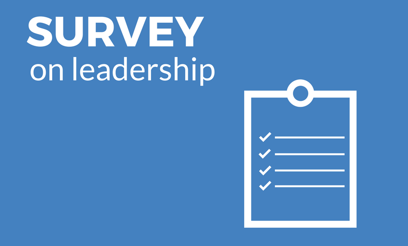 Worldwide study on leadership in projects